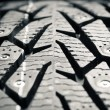 Stock Photo: Protector of winter tire, macro view