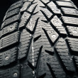 Stock Photo: Protector of winter tire, close-up view