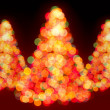 Stock Photo: Christmas trees bokeh lights