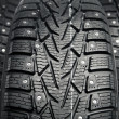 Protector and snow spikes of winter tires — Stock Photo #17396487