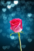 Red rose with blue bokeh hearts background — Stock Photo