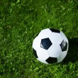 Stock Photo: Soccer ball on the grass