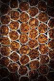Cigarettes background — Foto Stock