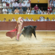 Bullfighting. - Stock Photo