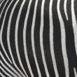 Texture of the skin of a zebra. — Stock Photo
