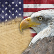 American flag and bald eagle — Stock Photo #13128387