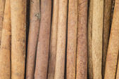 Cinnamon texture — Stock Photo