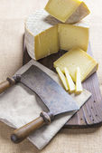 Handmade sheep cheese on the cutting board — Stock Photo