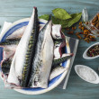 Fresh mackerel to cook — Stock Photo