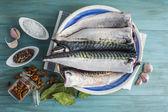 Fresh mackerel to cook — Stock Photo