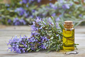 Rosemary essential oil — Stock Photo