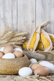 Fresh free range eggs  — Foto Stock