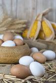 Färska frigående ägg — Stockfoto