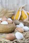 Fresh free range eggs  — Stock Photo