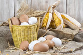 Fresh free range eggs  — Stock Photo