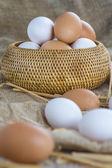 Fresh free range eggs  — Stockfoto