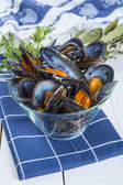 Steamed mussels — Stock Photo