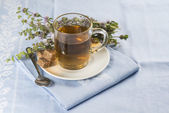 Mentha pulegium infusion — Stock Photo
