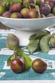 Closeup from ecological plums — Photo