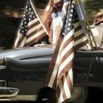 Car an flags — Stock Photo #29924767