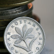 Coin from Hungary, forint — Stock Photo