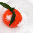 Orange in snow — Stock Photo