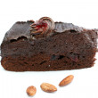 Piece of chocolate cake — Stock Photo #13568959
