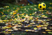 Automn soccer ball — Stock Photo