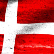 Denmark flag — Stock Photo #19564857