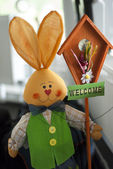 Welcome bunny — Foto Stock