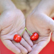 Stock Photo: Cherries on male hands