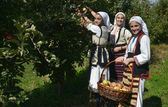 Girls In Traditional Macedonian Clothes In Orchard — Stock Photo