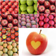 Apples collage — Stock Photo