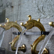 Dragon like monastery faucets — Stock Photo