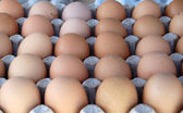 Eggs for sale — Stock Photo