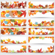 Colorful autumn leaves banners — стоковый вектор #12892093