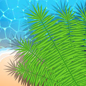 Summer illustration with ocean, beach and palm leaves — Stock Vector