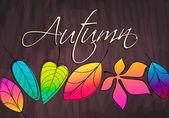 Cute autumn leaves — Stock Vector