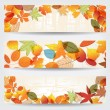 Colorful autumn leaves banners — Stock Vector #28964251