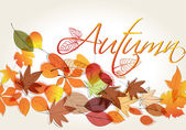 可爱的秋天图 — 图库矢量图片