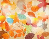 Cute autumn illustration — Stock Vector