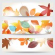 Colorful autumn leaves banners — Stock Vector