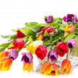 Basket of Tulips isolated on white background. Bouquet of tuli — Stock Photo #24428709