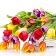 Basket of Tulips isolated on white background. Bouquet of tuli — Stock Photo #24868875