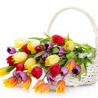 Basket of Tulips isolated on white background. Bouquet of tuli — Stock Photo #25192419