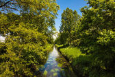 Summer river with bright blue sky. — Stock Photo