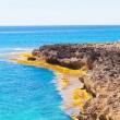 Cap de Ses Salines.  Balearic Islands — Stock Photo