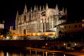 Cathedral of Palma de Mallorca La Seu night view — Stockfoto