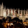 Cathedral of Palma de Mallorca La Seu night view — Stock Photo #27107257