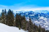 Paysage saison d'hiver en suisse. — Photo
